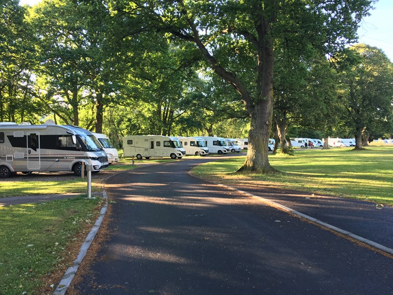 Motorhomes on pitches