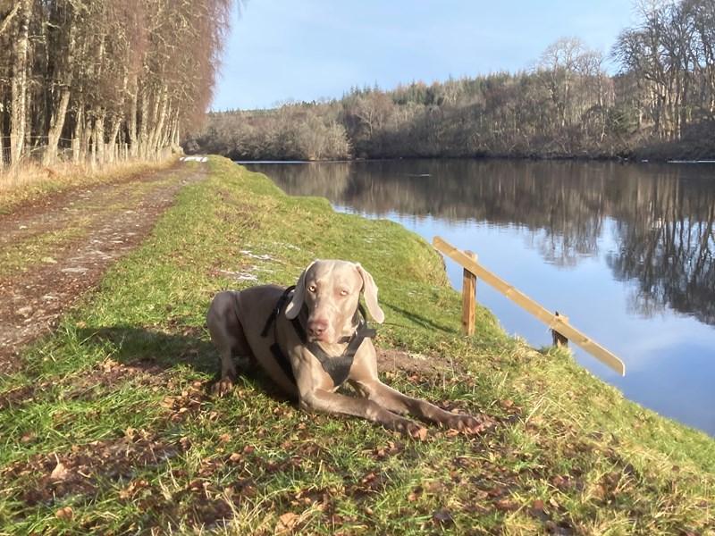 River Beauly Walk