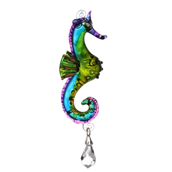 Sea Horse (Tropical)