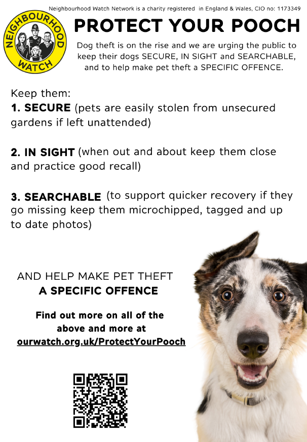 Protect your pooch flyer