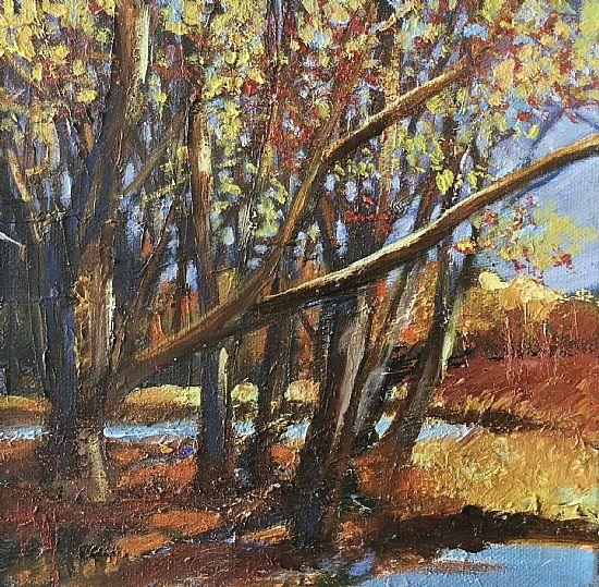 Autumn study, Torbreck