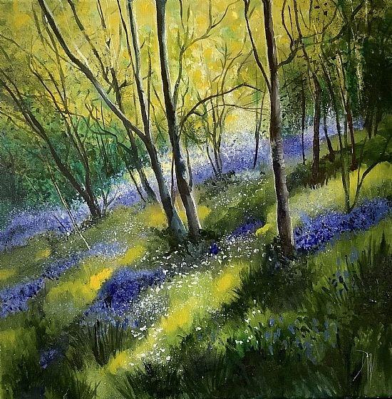 Dores woods spring 20