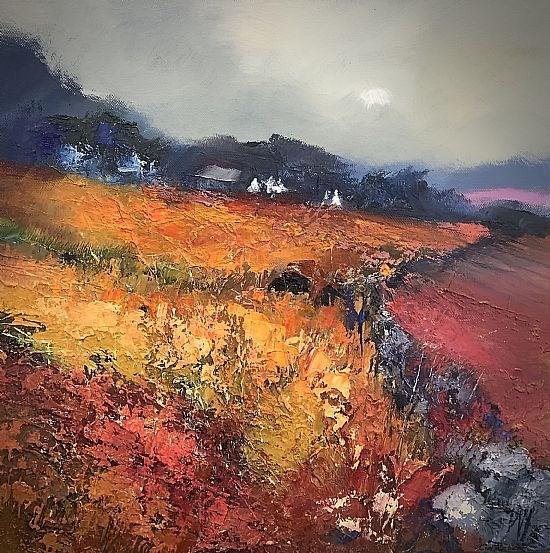 Autumn fields Black Isle