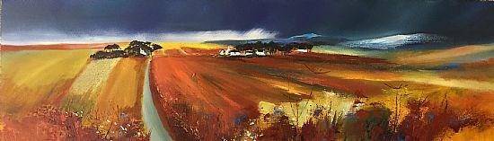Autumn fields, Wester Ross