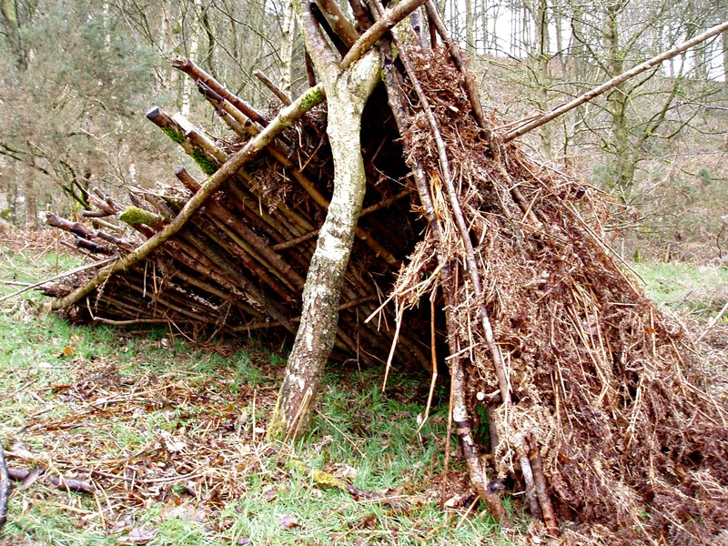 Bushcraft adventure activity sessions in Northumberland, North East England