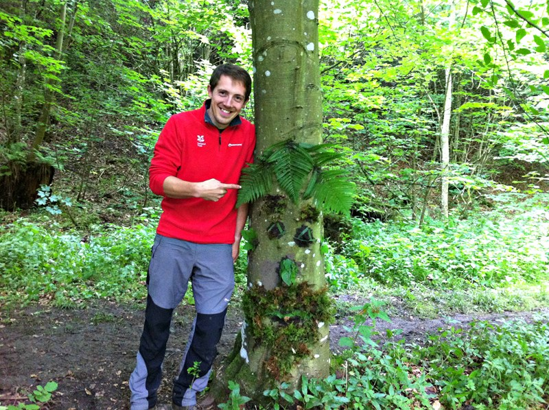 Forest schools activities in Northumberland and County Durham, North East England