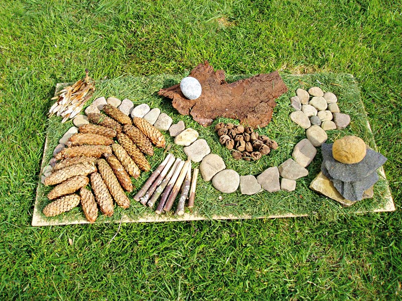 Get in touch to find out what forest schools activities we can offer you