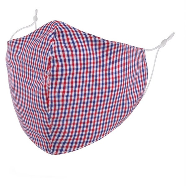 Red/blue gingham adult face mask