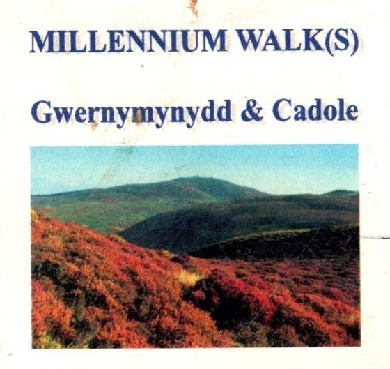 Millenium Walk Leaflet