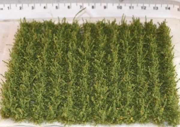 Green crop strips (TM42)