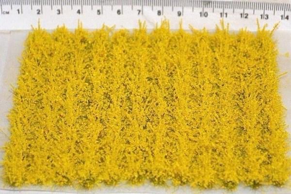 10cm Rapeseed Crop Strips (TM34)