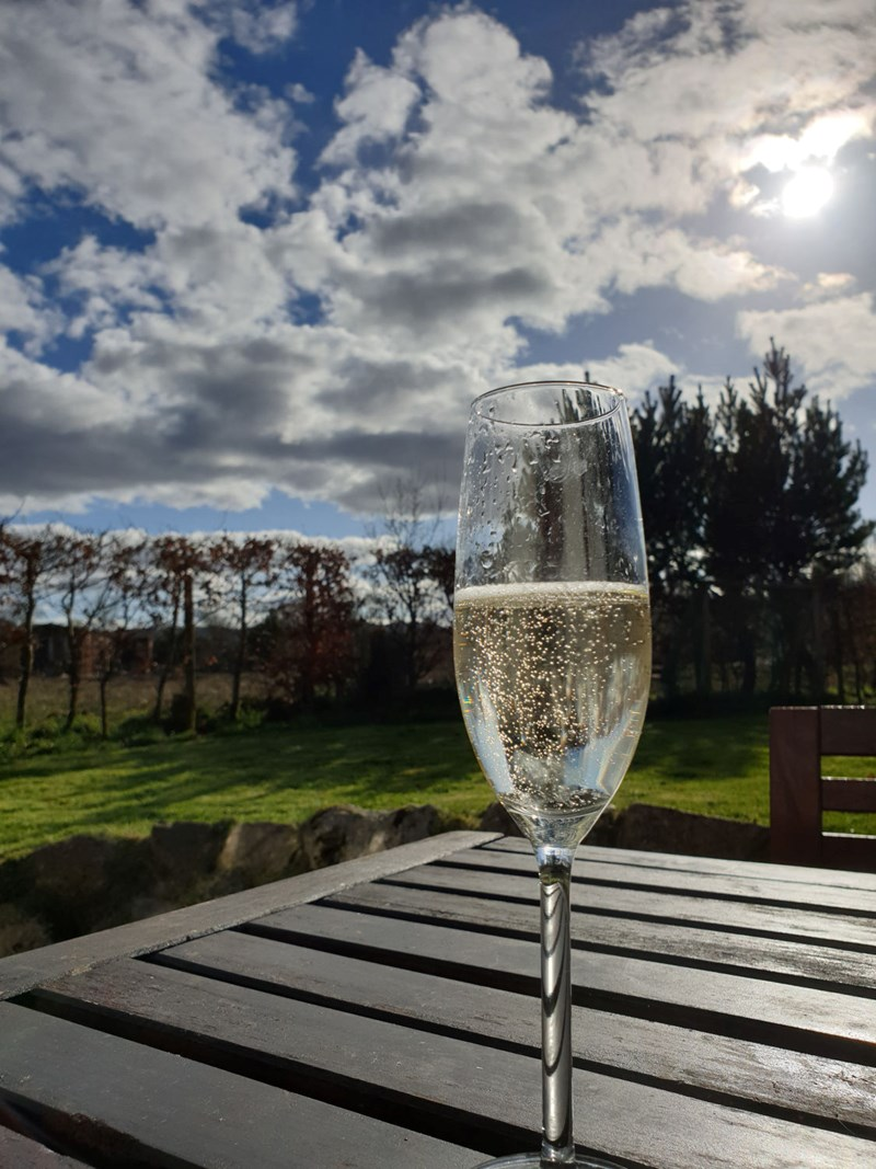 Glass of proscco with beech hedge and blue skies in the background, Airds Bay, Taynuilt, Oban