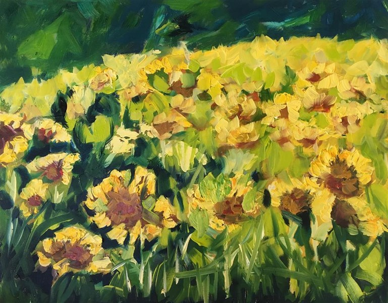 Late Sunflowers 65x55cm, Holroyd Gallery