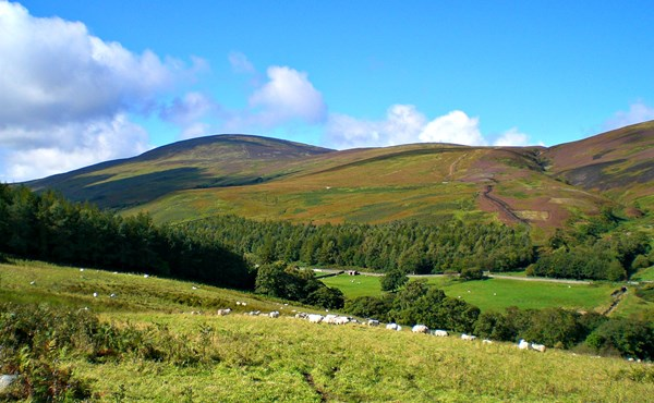 Introduction to hill walking in Northumberland (1 day course)