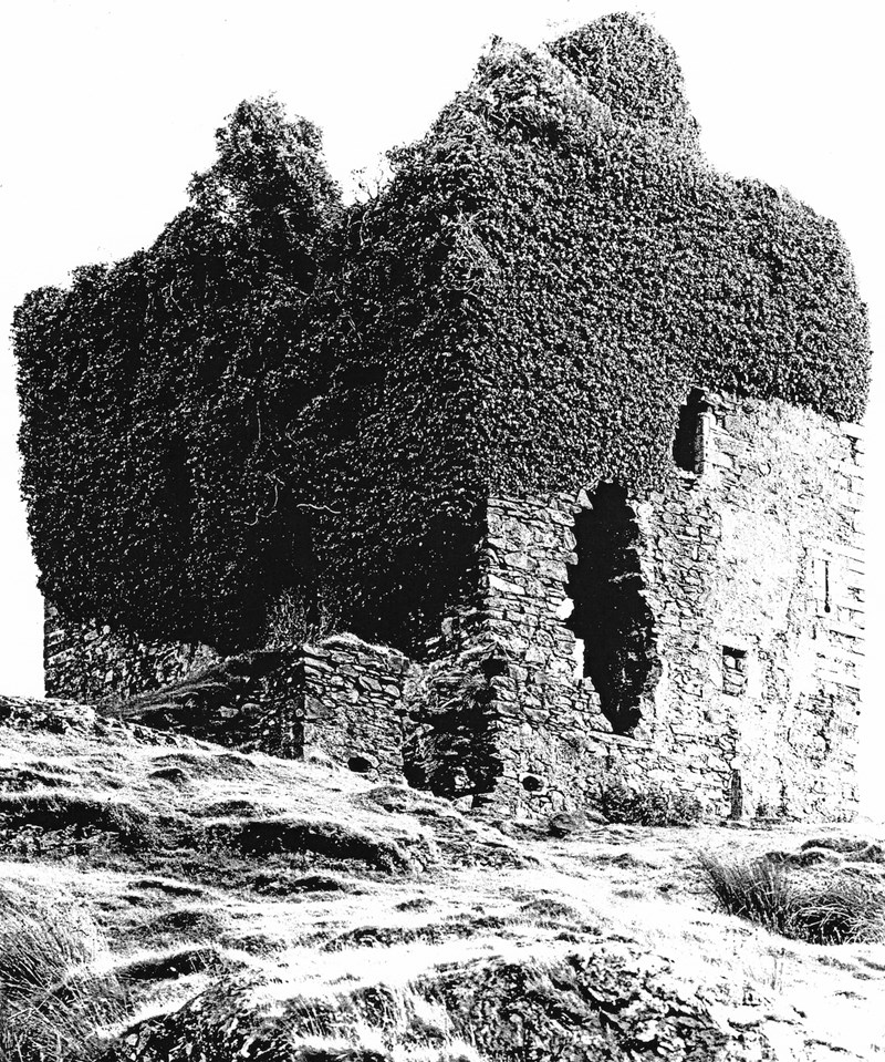 The tower house, ivy-covered, prior to the current phase of community-led protection and management